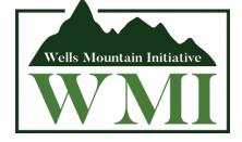 The 2021 Wells Mountain Initiative (WMI) Scholarship Program for Students from Developing countries is ready to fund students of the developing world as much
